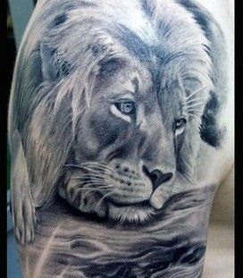 Cute lion tattoos