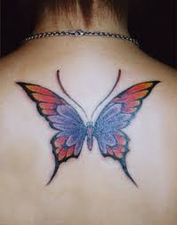 Diversified butterfly on the back
