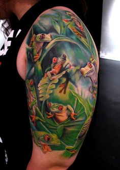 Frogs on the shoulder