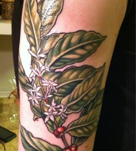 Green plant tattoo