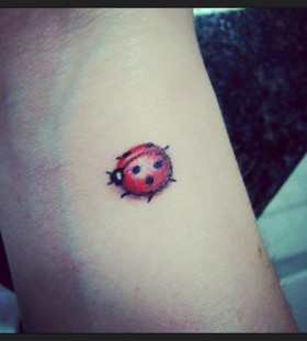 Ladybird bug tattoo