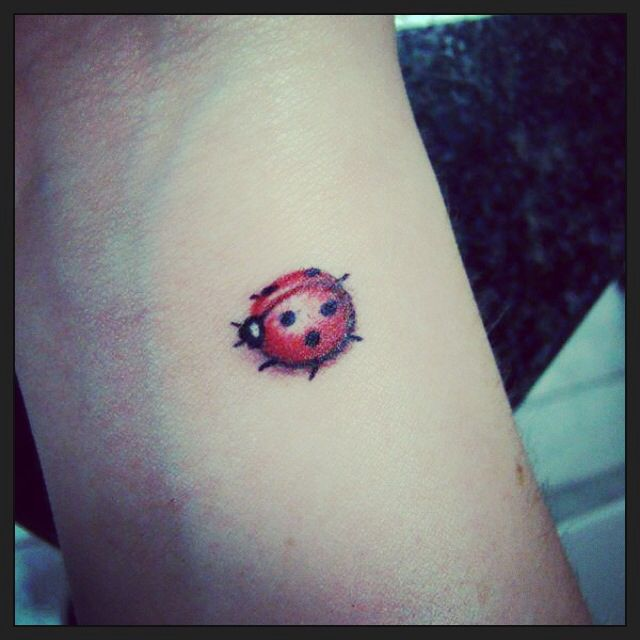 Ladybird bug tattoo