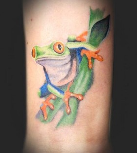 Pretty frog tattoo