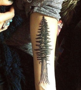 Redwood tree black tattoo