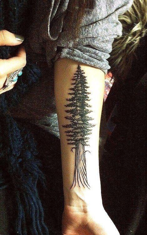 Redwood tree black tattoo