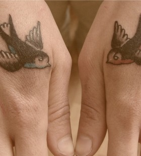 Wonderful birds on hands