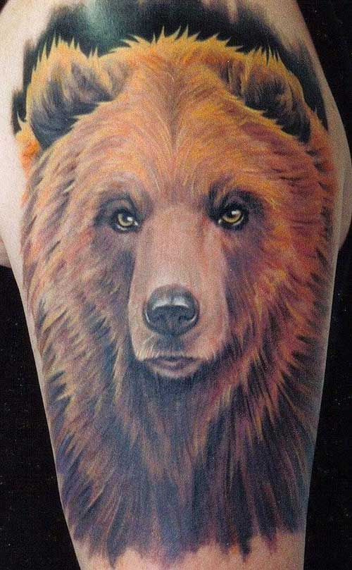 beautiful colored bear