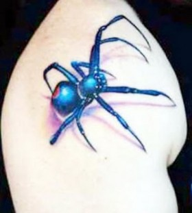 blue arachnids