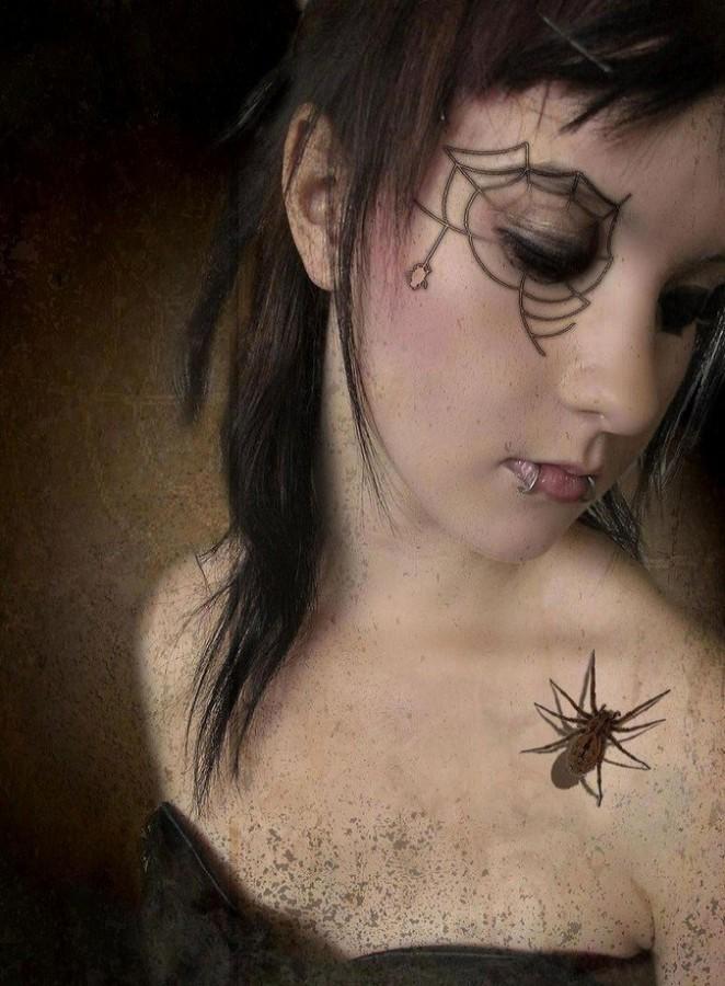 brown arachnids net