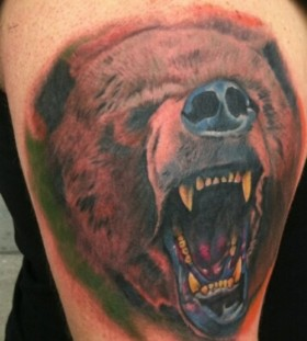 open moth colored bear