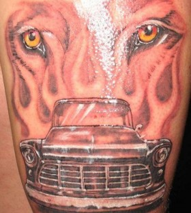 tiger head and car