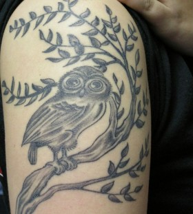 Awesome black owl tattoo