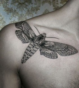 Butterfly tattoo by Chaim Machlev