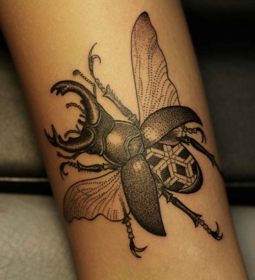 Coolinsect tattoo