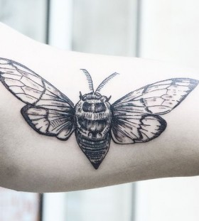 Pretty black insect tattoo