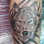 Amazing black wolf tattoo on arm