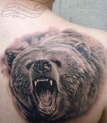 Angry black bear tattoo on shoulder