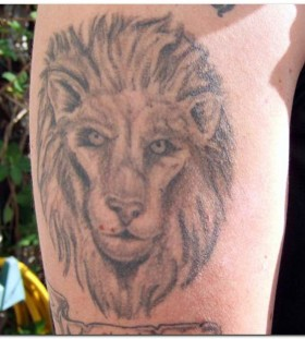 Angry black lion tattoo on leg