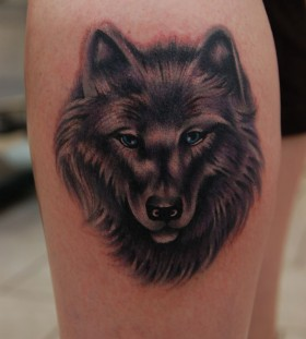 Awesome collection wolf tattoo on leg