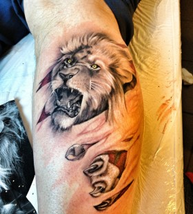 Awesome example of lion tattoo on leg