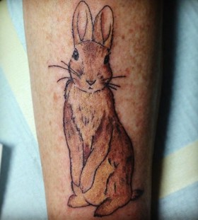 Beautiful brown rabbit tattoo on arm