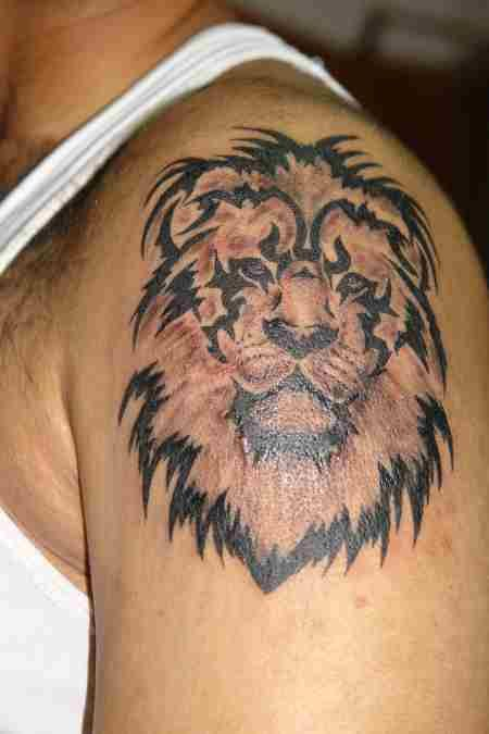 Black and brown tiger tattoo on arm