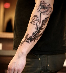 Black and white lovely poppy tattoo on arm