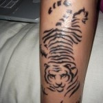 Black lines of tiger tattoo on arm