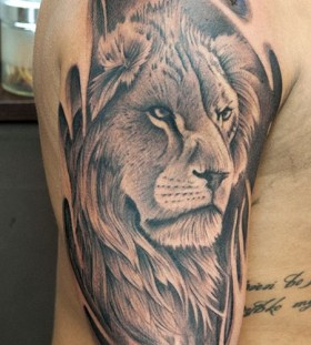 Black words and lion tattoo on leg