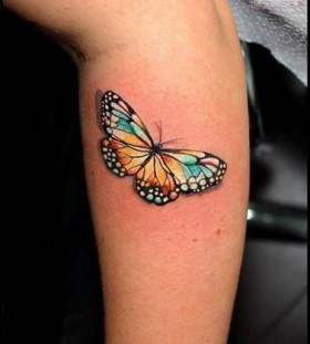 Bright simple butterfly tattoo on arm
