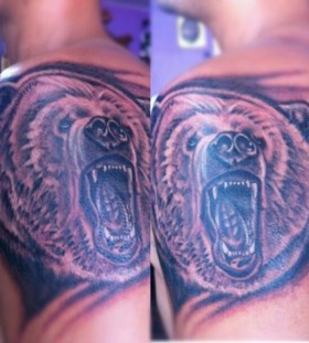 Brown amazing bear tattoo on shoulder