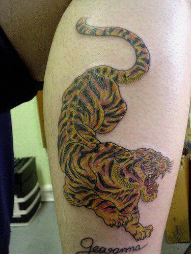 Cool colorful tiger tattoo on leg