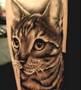 Cute cat tattoo on leg with big eyes