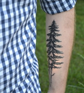 Cute men's tree tattoo on arm