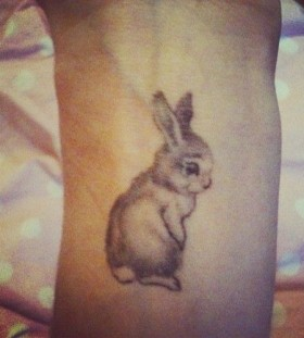 Cute small rabbit tattoo on arm
