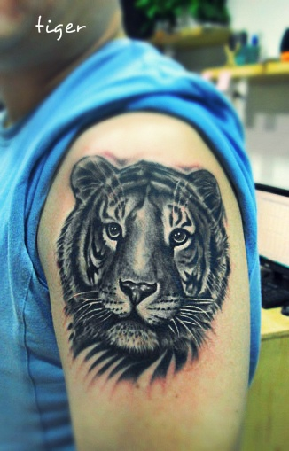 Cute small tiger tattoo on arm