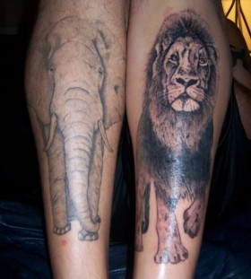 Elphant and lovely lion tattoo on leg