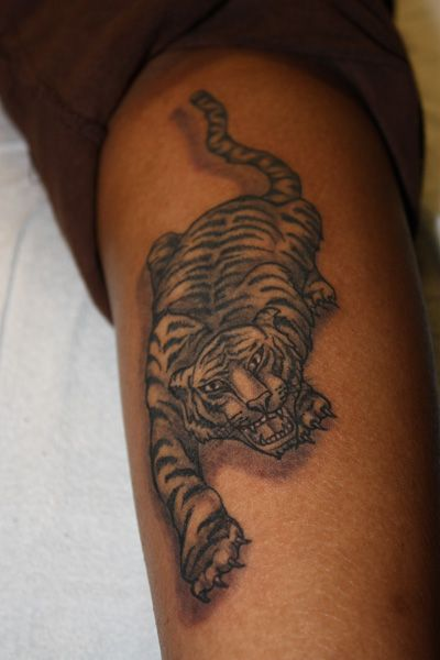 Example of angry tiger tattoo on arm
