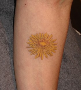 Family crest sun tattoo on arm
