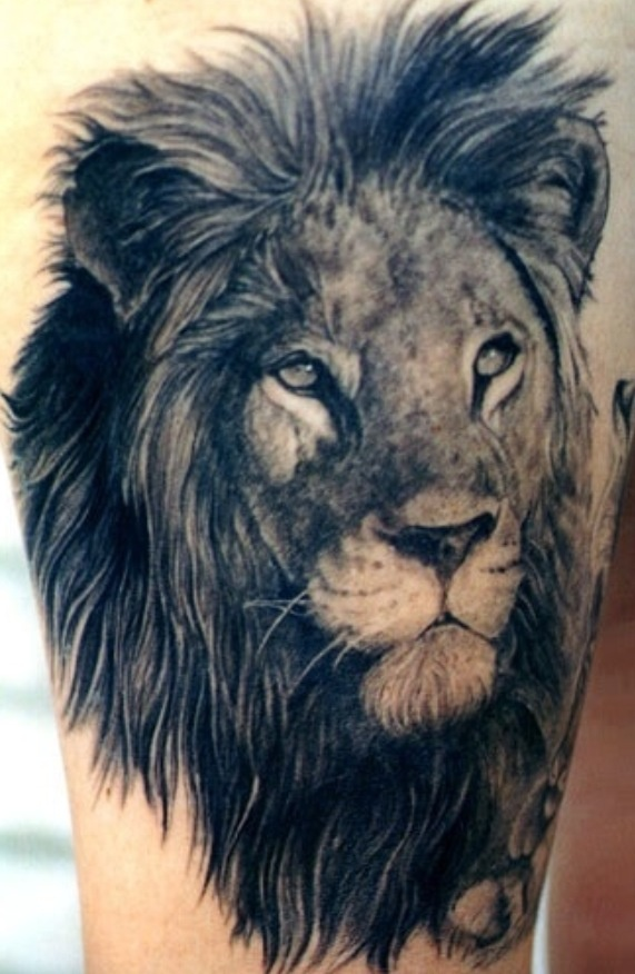 Lovely black lion tattoo on leg