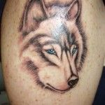 Lovely brown wolf tattoo on arm