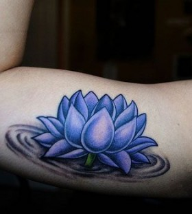 Lovely realistic blue flowers tattoos
