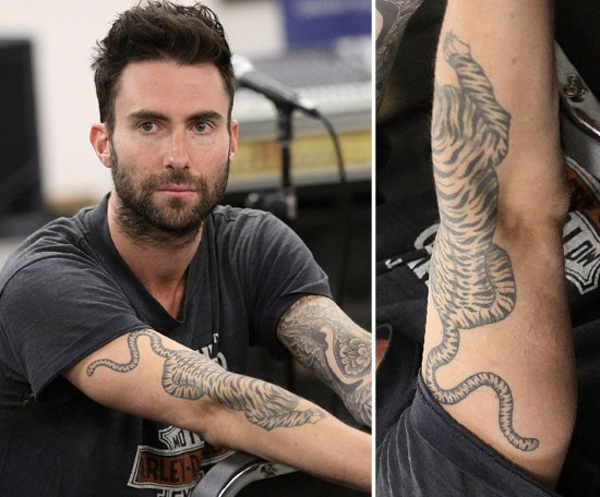 Men and his tiger tattoo on arm