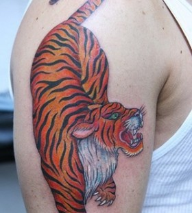 Realistic colors tiger tattoo on arm