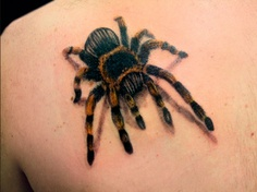 Realistic spider tattoo on back