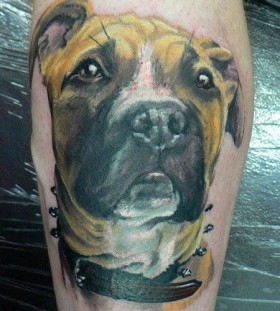 Sad lovely dog tattoo on leg