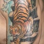Small lovely tiger tattoo on arm