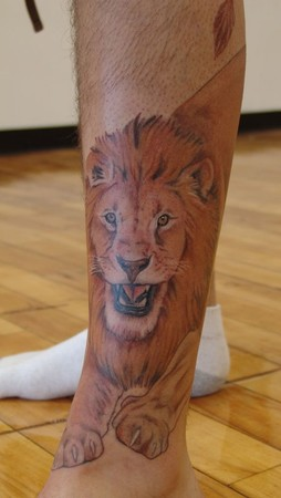 Lions tattoos on legs