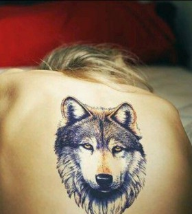 Women back wolf tattoo