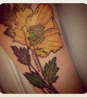 Traditional flower yellow tattoo